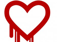 Heartbleed OpenSSL Graphic