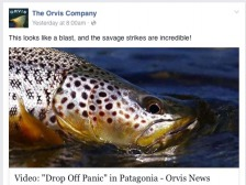 Orvis' Facebook page entices you to click, which brings you to...