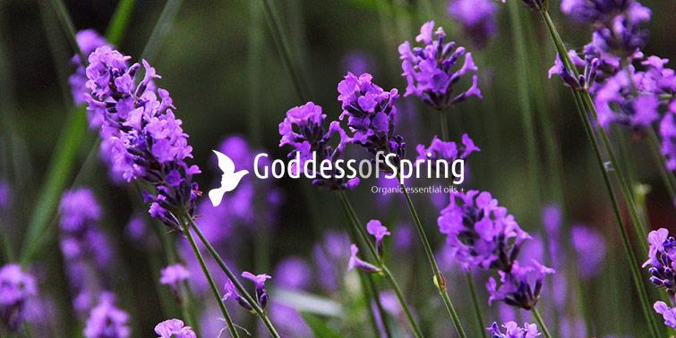 Goddess of Spring.