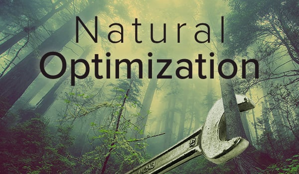 optimize your content naturally.