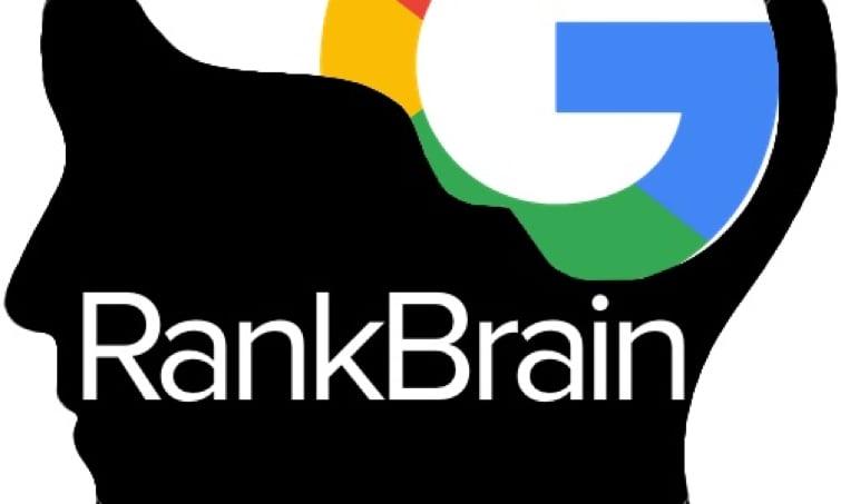 rack brain.